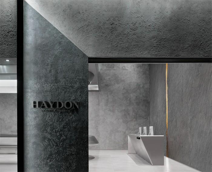 HAYDON | 時空裂縫 墜入未來插图33