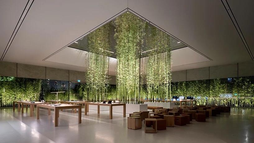 """竹海"""" apple store 澳门店 : foster partners"""